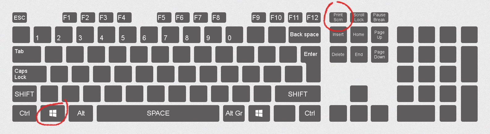 Plastic Perfection  Get Typing Tutors and Other Custom