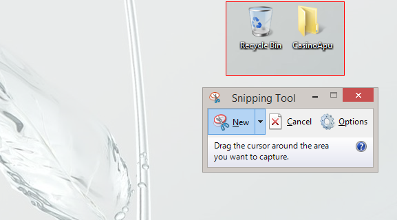 Selecting area using snipping tool.
